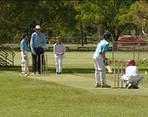 Under 12 Junior Cricket Carnival